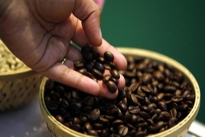 कॉफी की पांच किस्मों