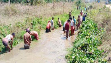 किसानों ने श्रमदान कर की 5 किलोमीटर लंबी नहर की सफाई