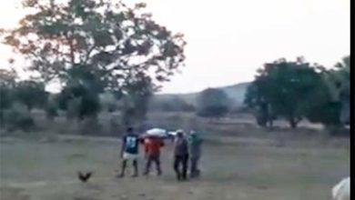 जंगली हाथी ने ग्रामीण को कुचला मौत, परिजनों ने कर्ज लेकर किया दाह संस्कार