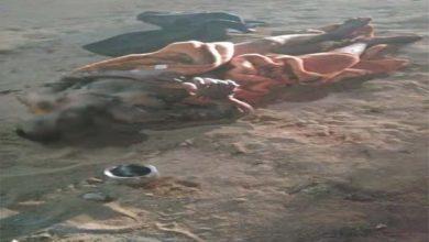 ITBP के जवान ने चारामा में खुद को लगाई आग, 70 फीसदी झुलसा