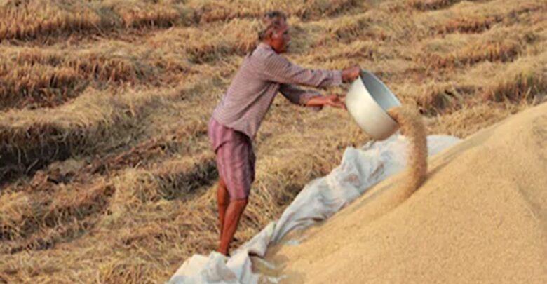 किसानों को धान की तीसरी किस्त